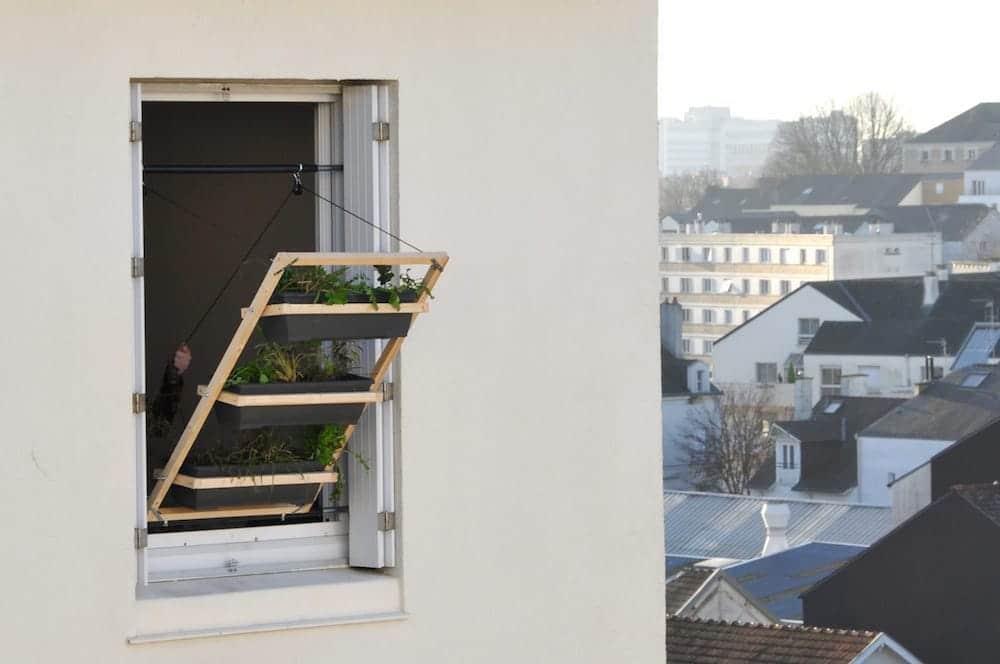 Jardin vertical para ventanas 1