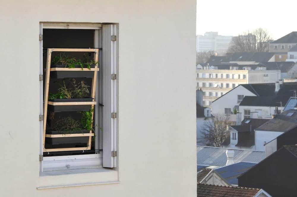 Jardin vertical para ventanas 2