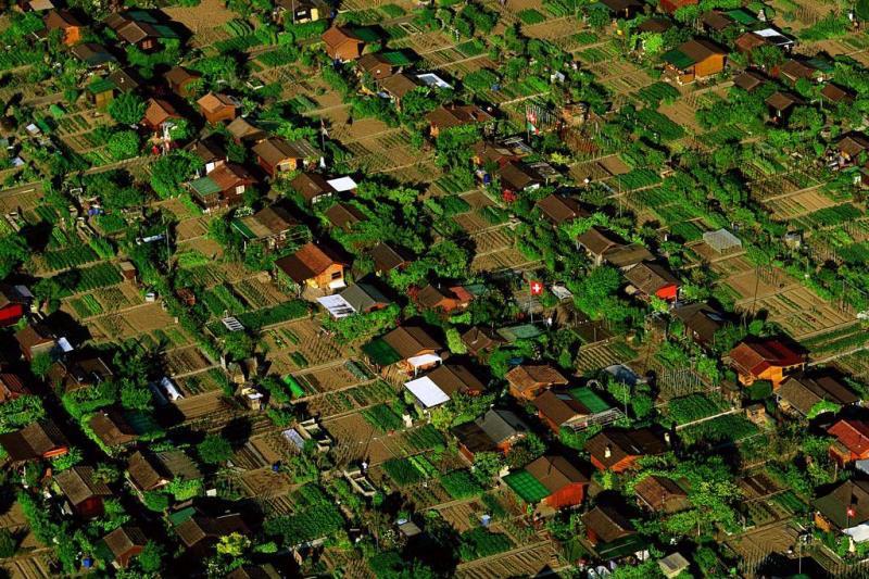 La-ciudad-donde-cada-habitante-tiene-su-propio-huerto-urbano