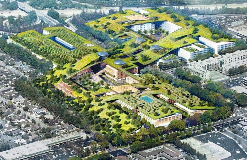 California disfrutará del techo verde más grande del mundo