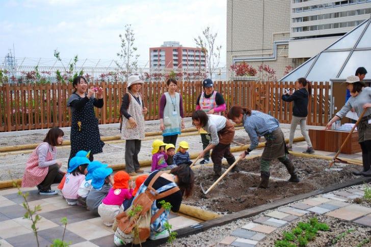 Transforman azoteas de las estaciones de tren en huertos urbanos