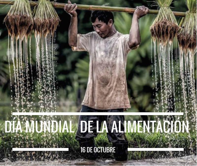 Día mundial de la alimentación FAO