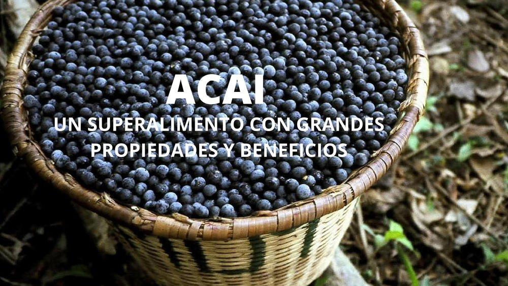 Acai: un nuevo súper alimento