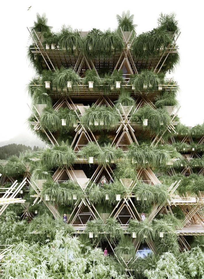 Construcción con bambu