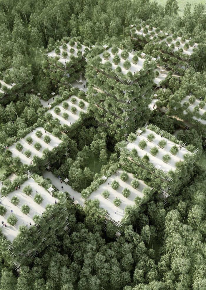 ciudad de bambú3