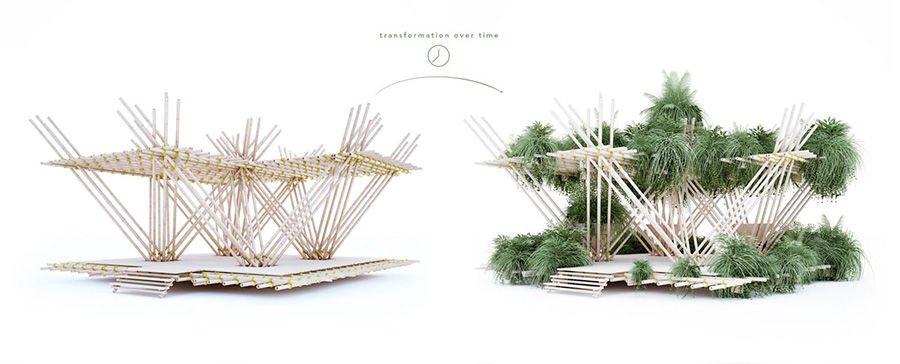ciudad de bambú4