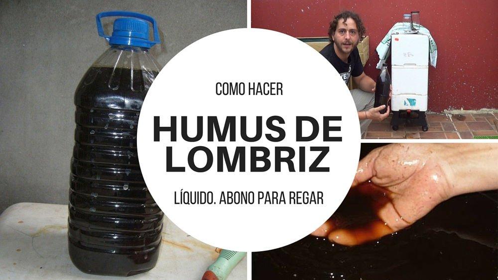 Como-hacer-humus-de-lombriz-liquido