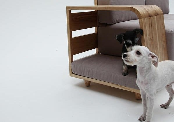 El sofa ideal para perros