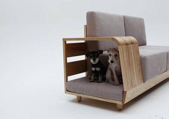 El sofa para los perros