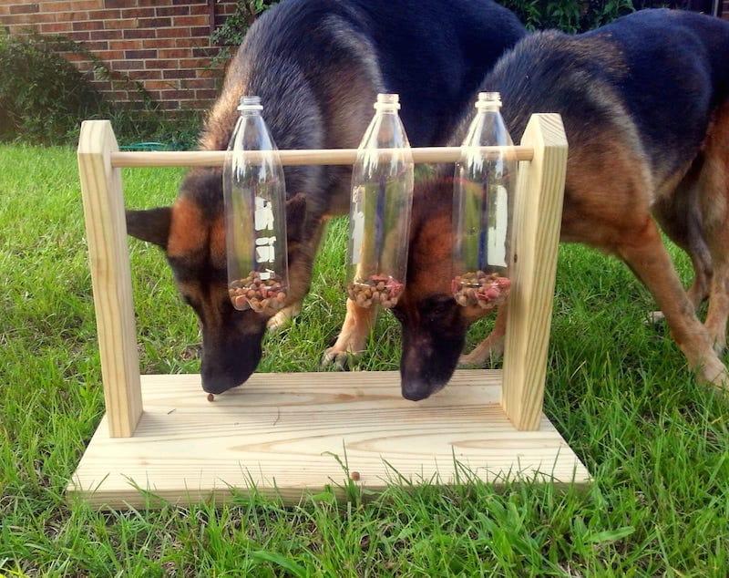 Juguete comedero perros casero