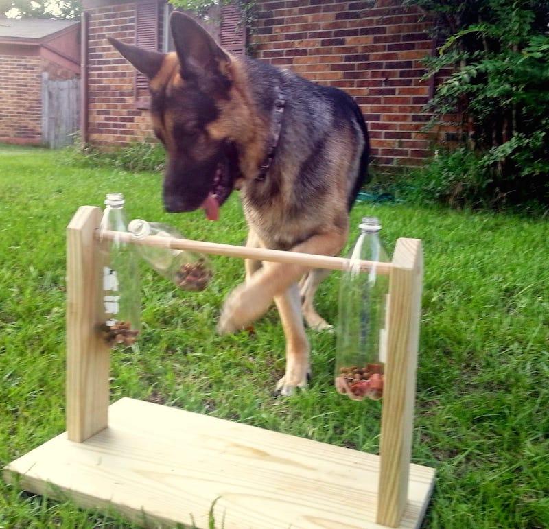 Juguete comedero perros