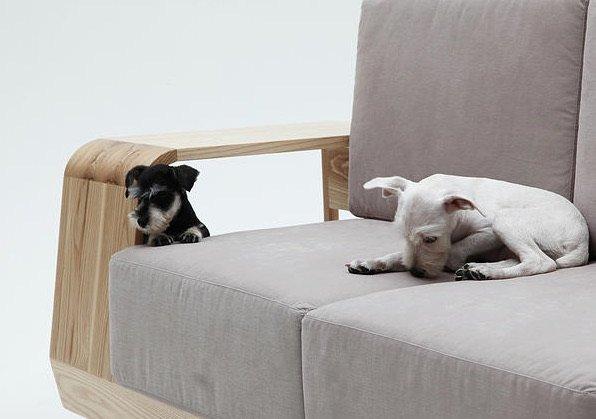 Sofa ideal para perros