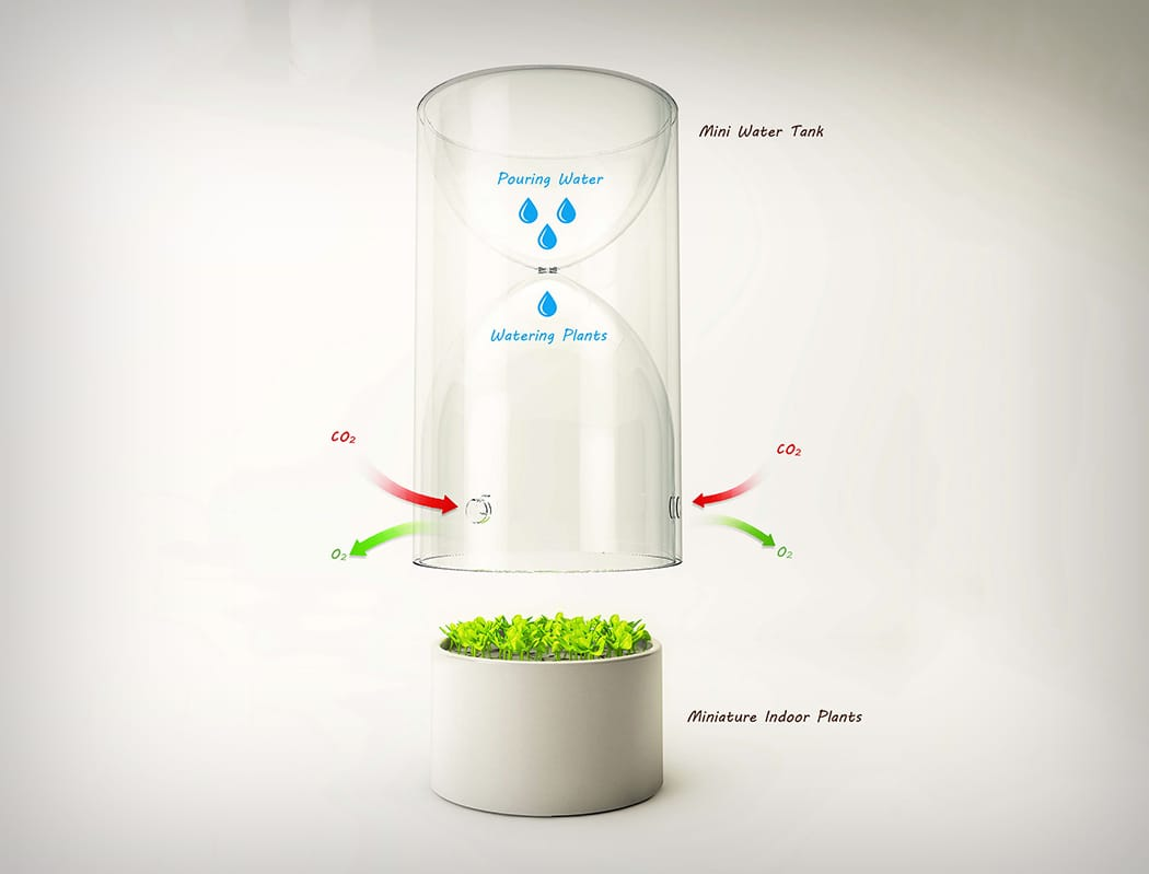 Invernadero de bolsillo para plantas