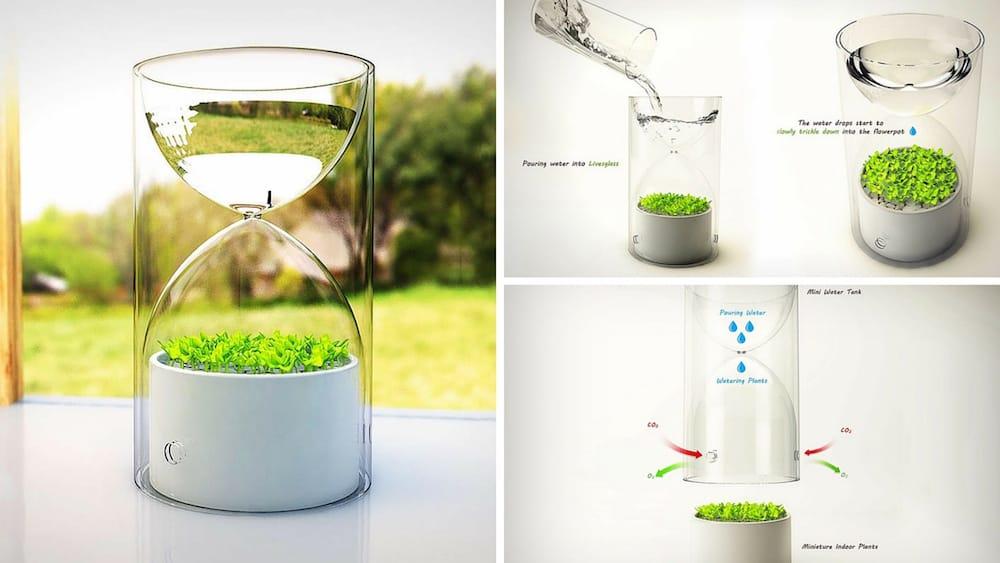 Un invernadero de bolsillo para tus plantas