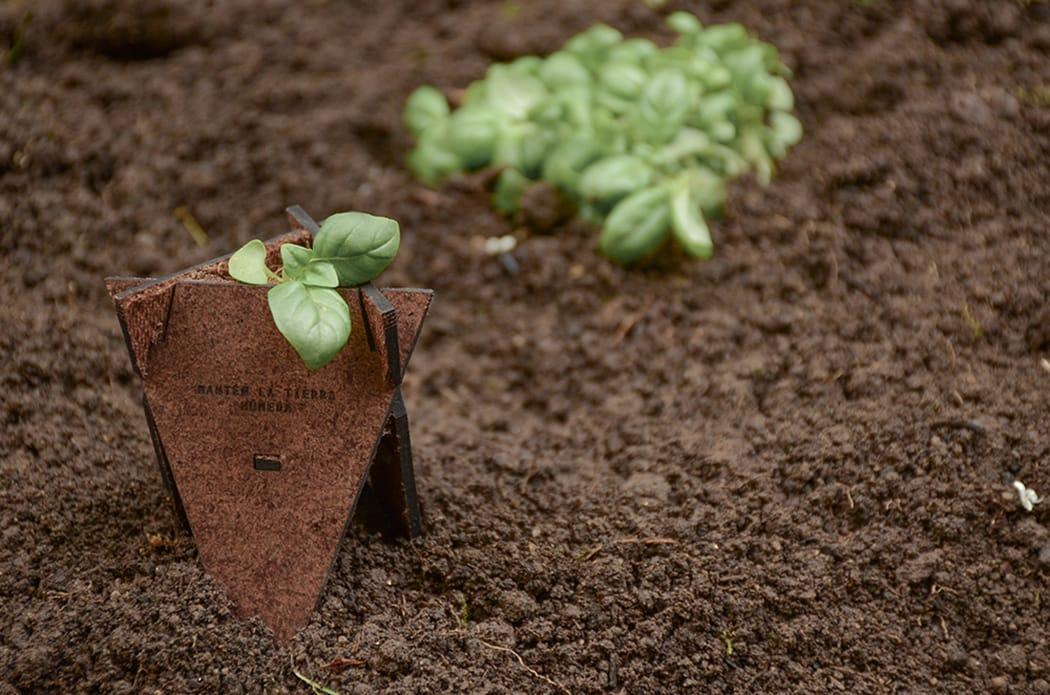 Solución de germinación orgánica