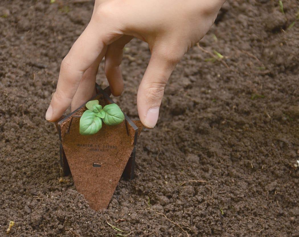 Solución de germinación orgánica1