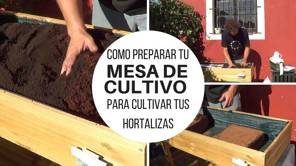Como preparar tu mesa de cultivo para cultivar tus hortalizas