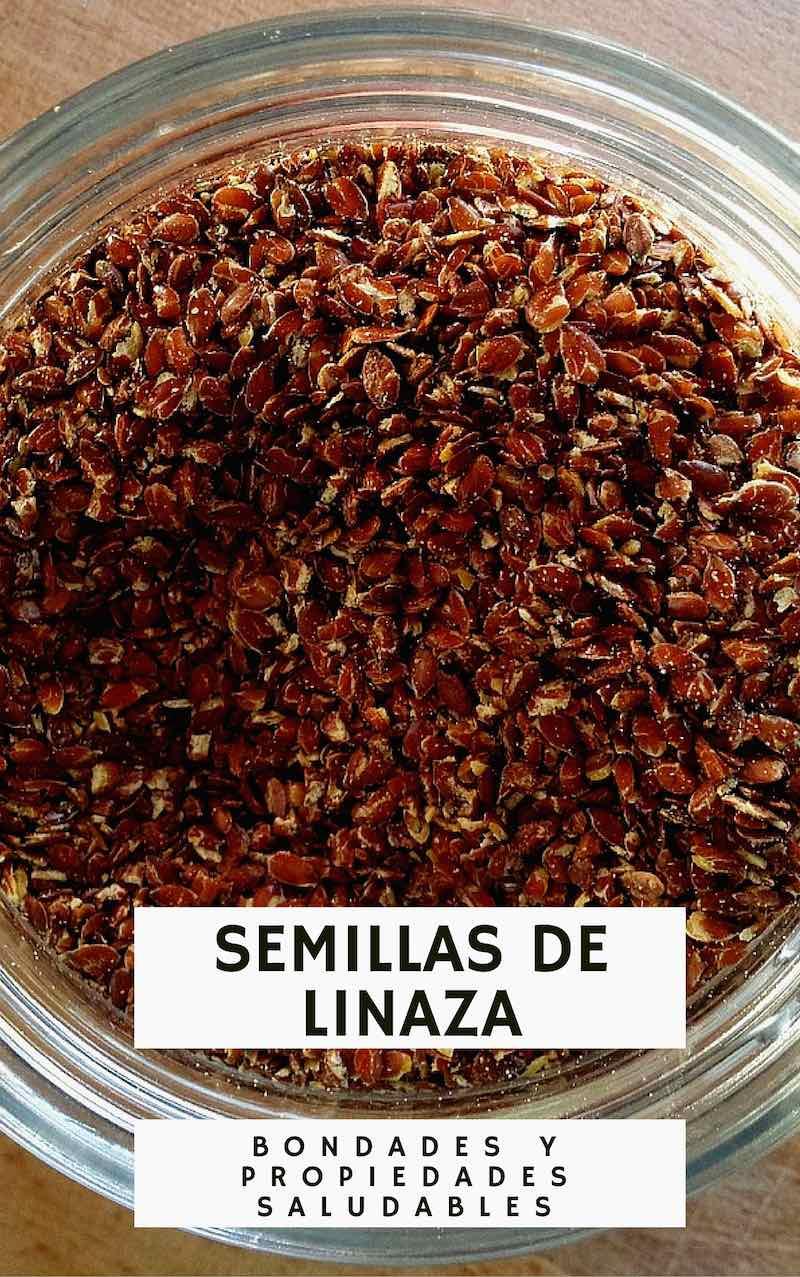 Semillas de linaza: Sus bondades y propiedades saludables