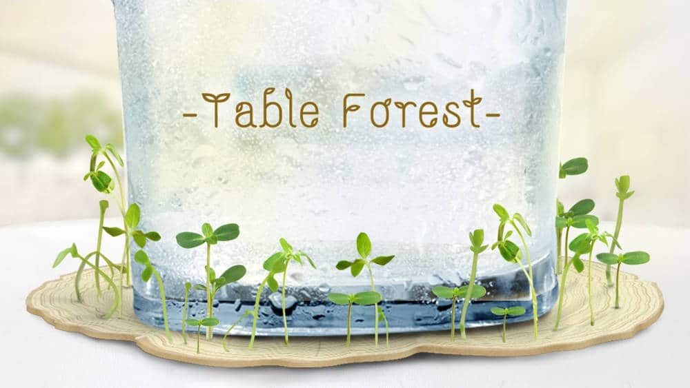 Table-forest