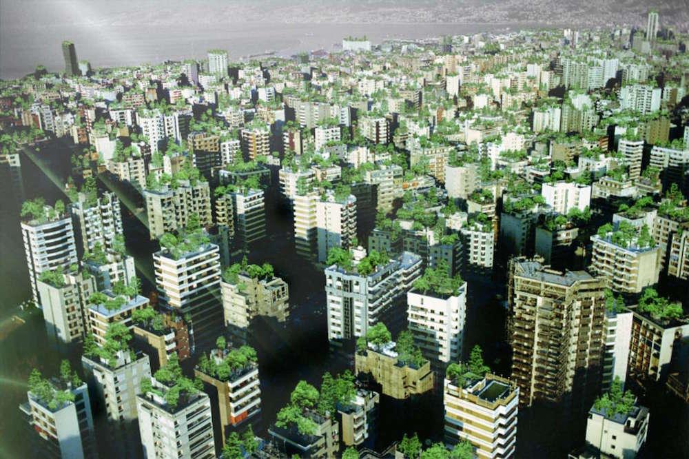 9 razones para convertir tu patio, terraza o jardín en un huerto urbano