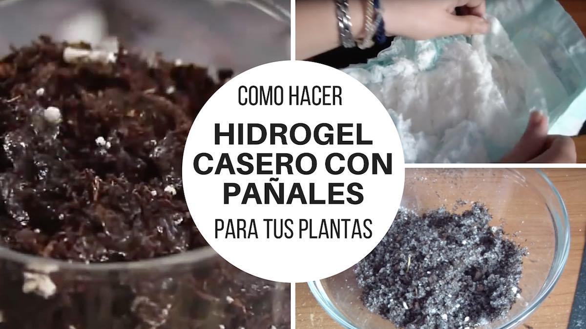 Cómo hacer hidrogel casero con pañales para ayudar a crecer a tus plantas