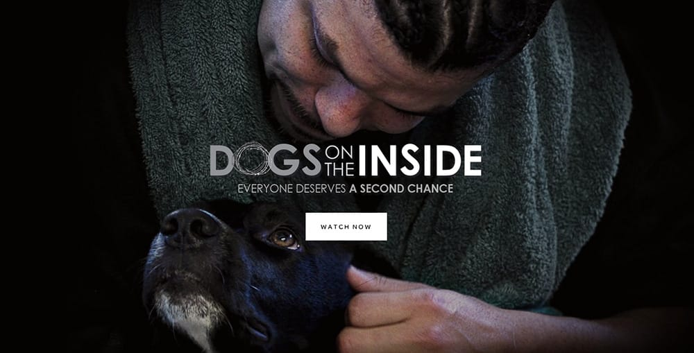 Dogs-on-the-inside