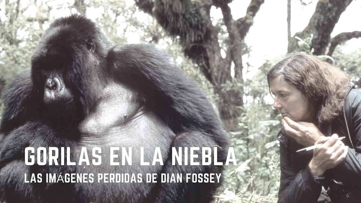 Gorilas en la Niebla. Las Imágenes Perdidas de Dian Fossey