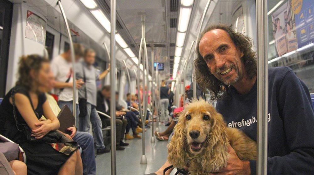 Los perros con sus dueños, ya pueden viajar en el Metro de Madrid