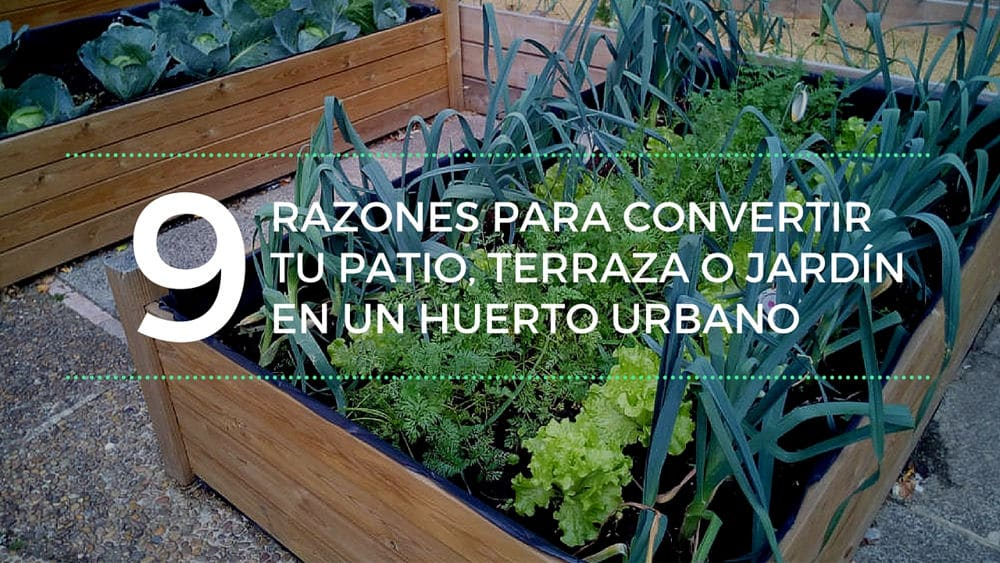 9 razones para convertir tu patio terraza o jard n en un - Huerto en la terraza ...