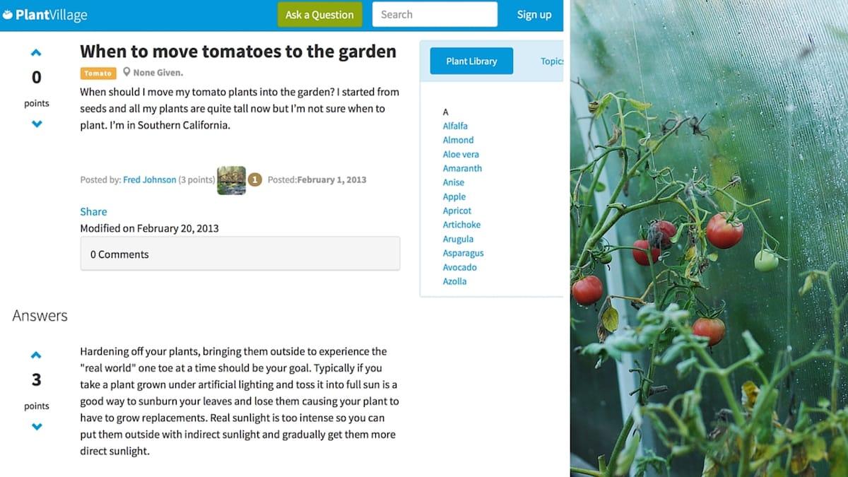 PlantVillage App. 50.000 fotos de plantas enfermas para detectar enfermedades rápidamente