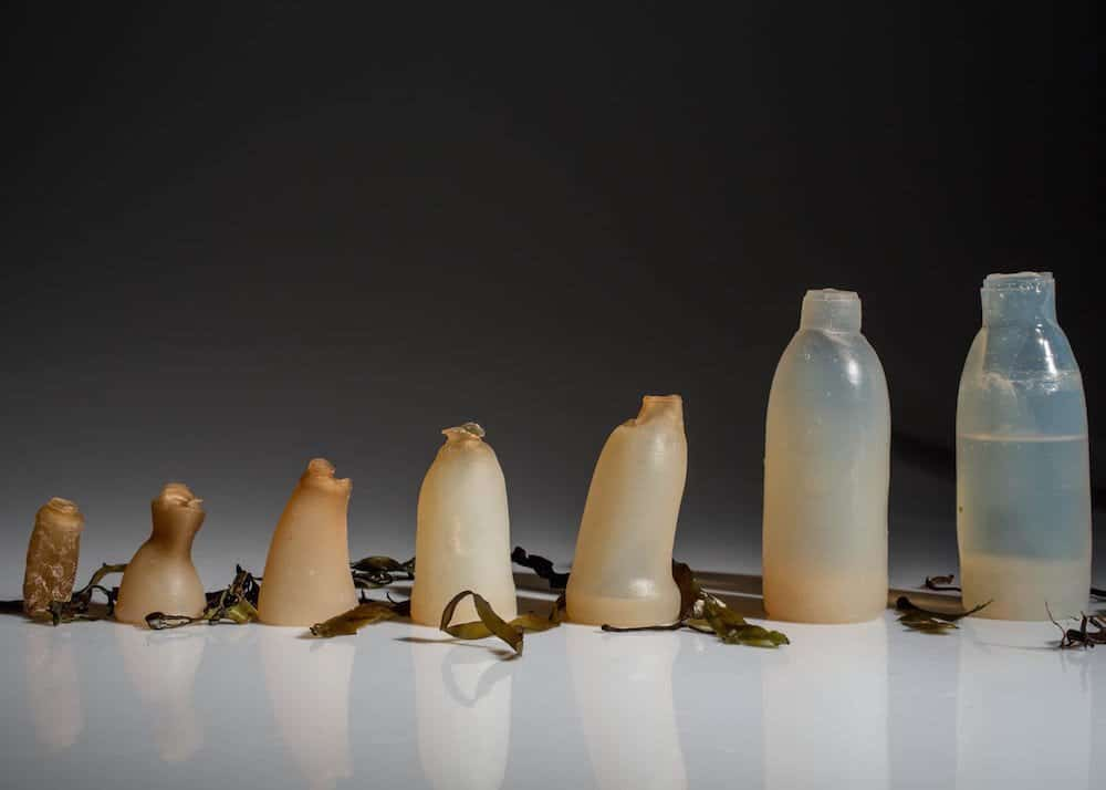 Botella-plastico-biodegradable