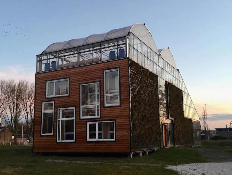Casa-invernadero