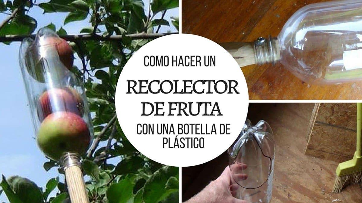 Como hacer un recolector de fruta con una botella de plástico