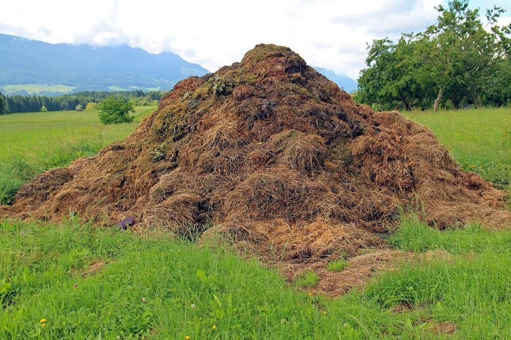 Compost-40
