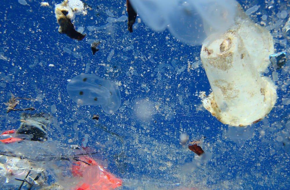 Contaminacion plástico en oceanos