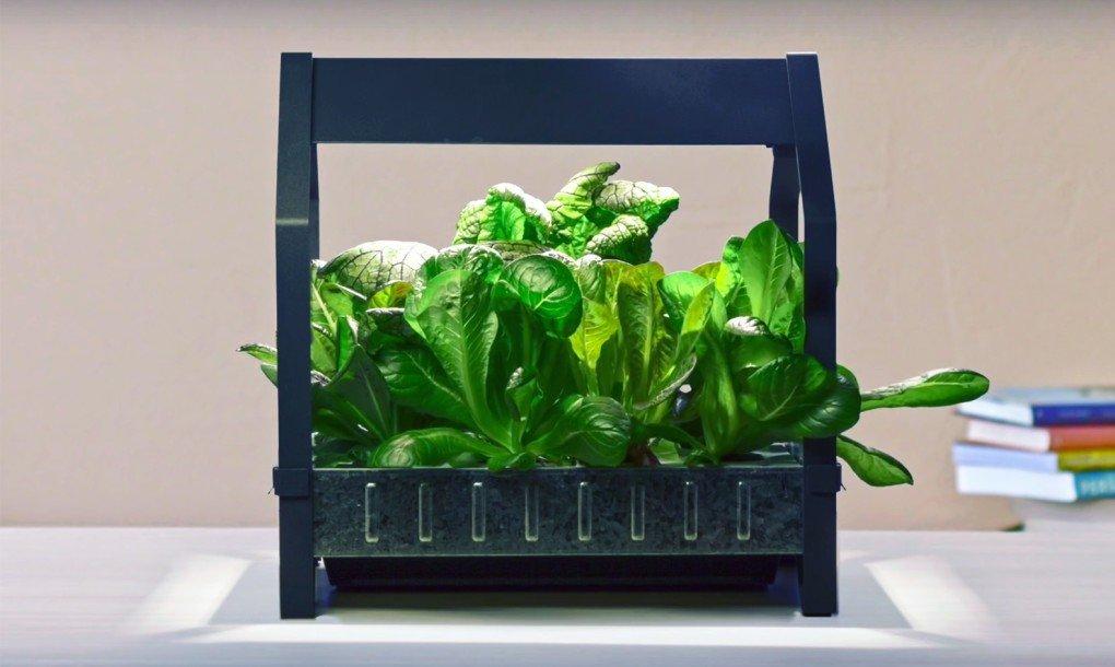 Ikea lanza un huerto hidrop nico para cultivar alimentos en casa durante todo el a o - Huerto en casa ikea ...