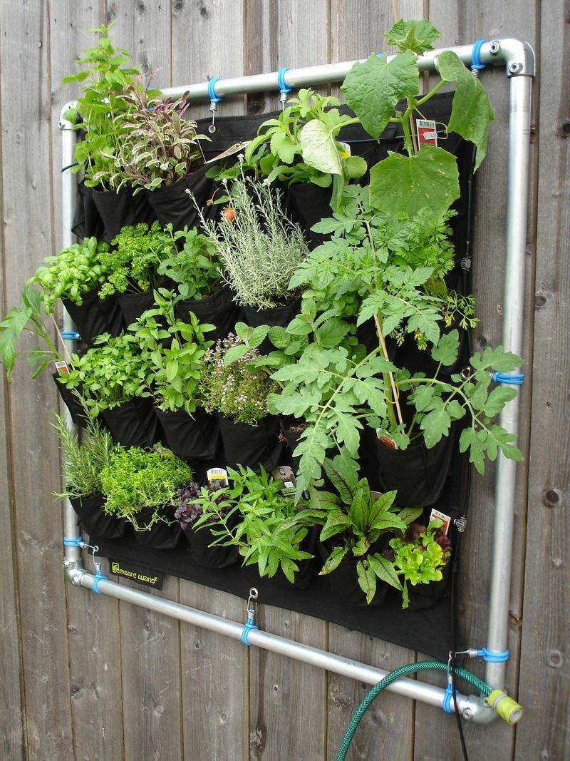 jardin vertical casero como hacer un jard n paso a siembra en casa jardín vertical pared
