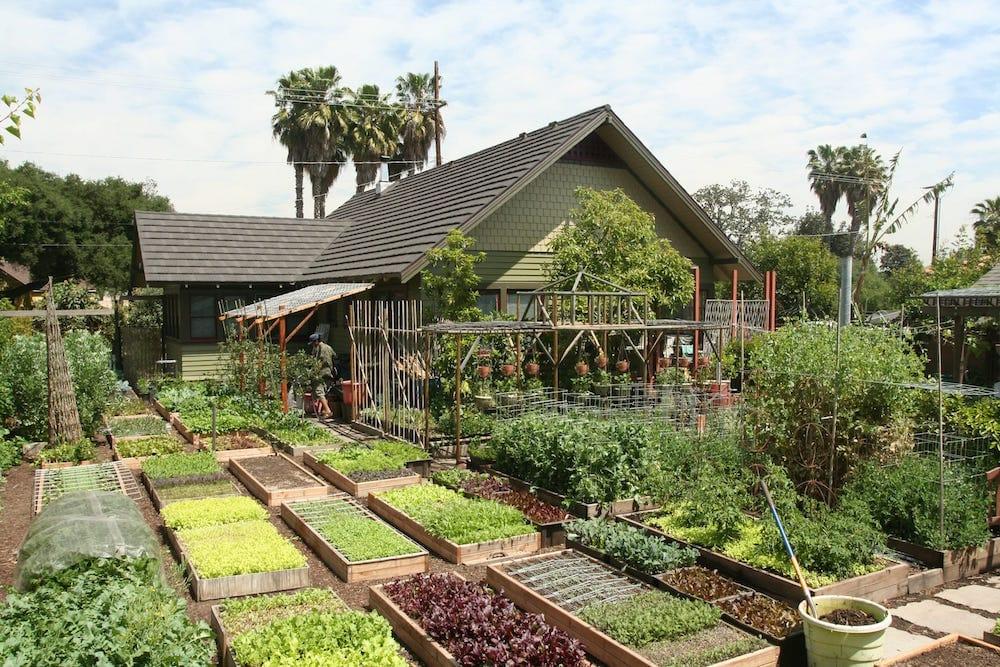 Cómo cultivar mas de 2700 kg de alimentos en 400 m2