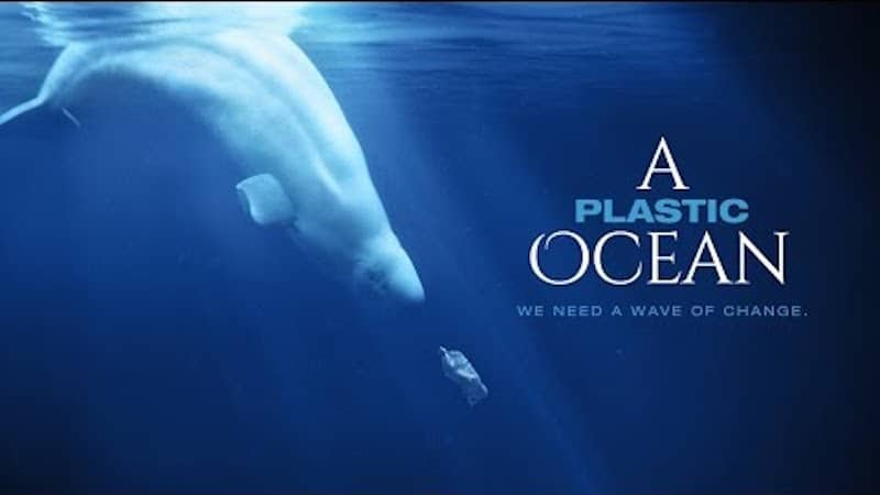 A-plastic-ocean