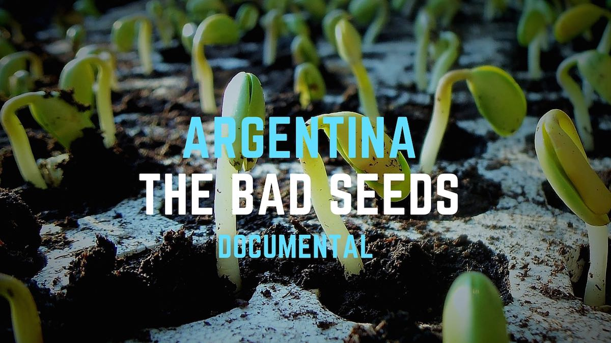 Argentina-the-bad-seeds