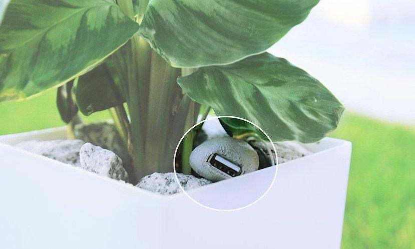 Bioo tecnologia 1