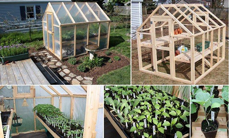 C mo construir un invernadero con estructura de madera for Como construir un kiosco en madera