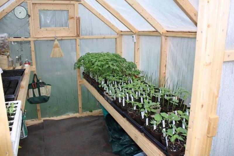 Como construir un invernadero con estructura de madera5
