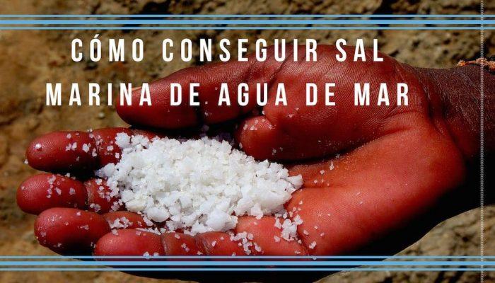 Cómo conseguir sal marina casera de agua de mar