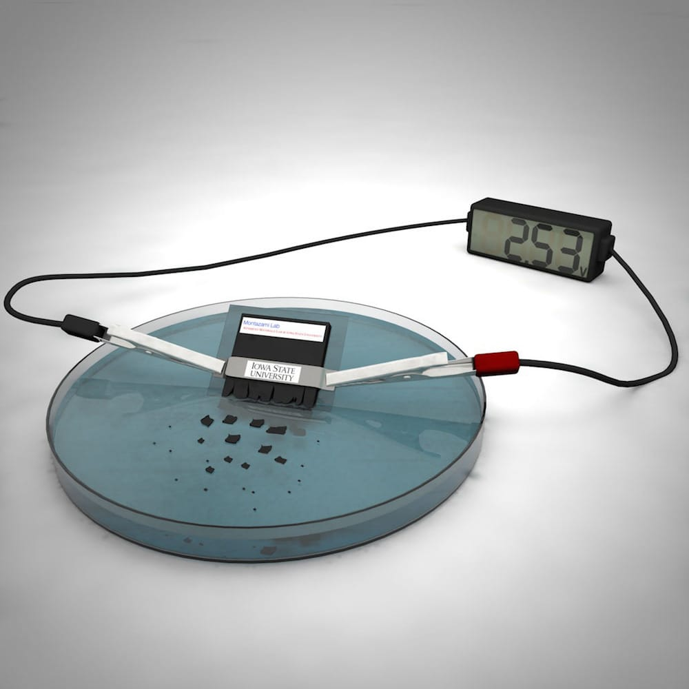 La batería biodegradable que se disuelve y desaparece en el agua