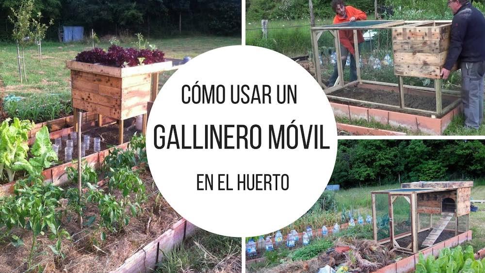 Gallinero-movil-en-el-huerto