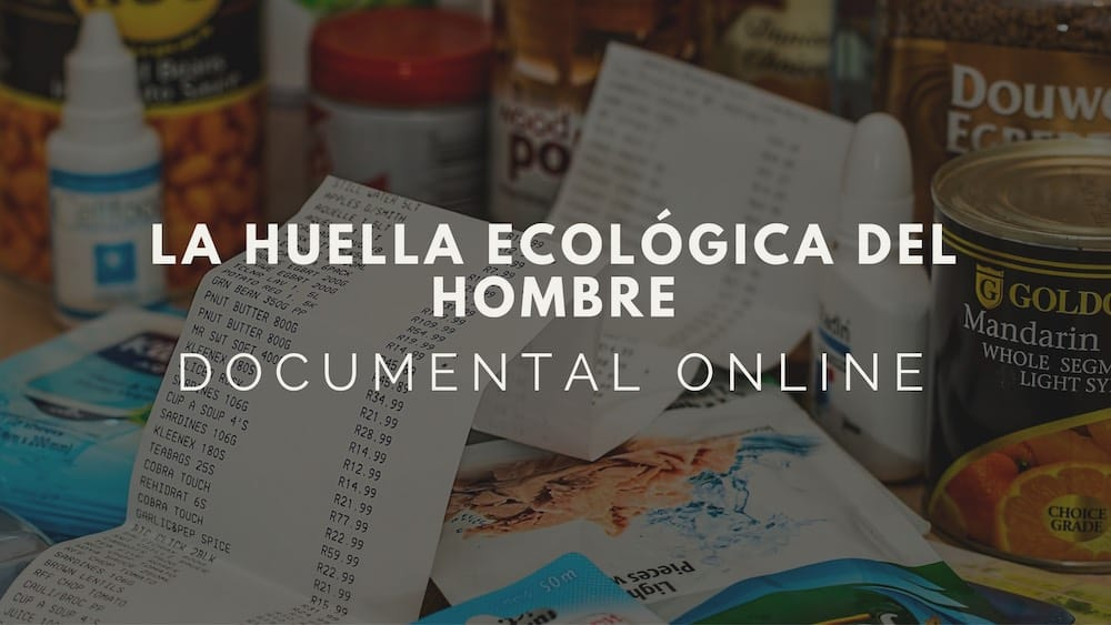 La-huella-ecologica-del-hombre