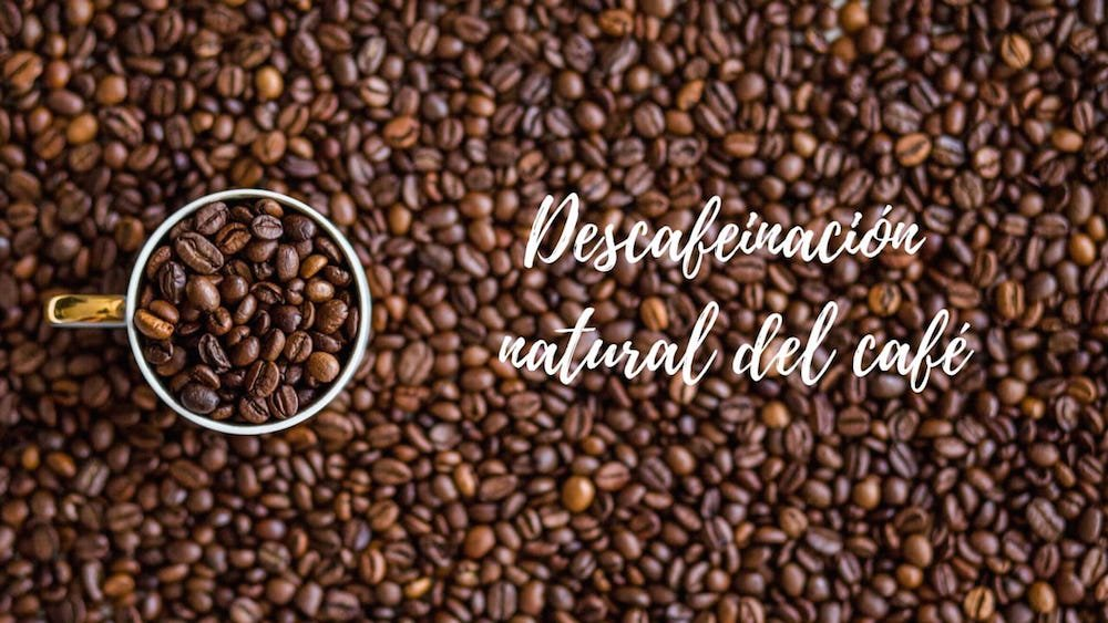 Descafeinizaci%c3%b3n-del-caf%c3%a9