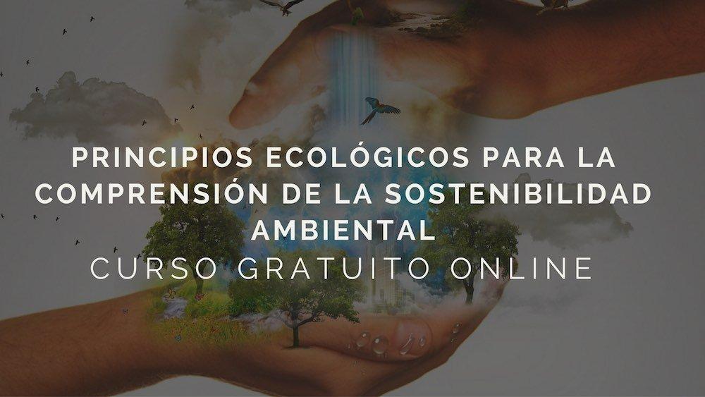 Principios ecológicos para la comprensión de la sostenibilidad ambiental