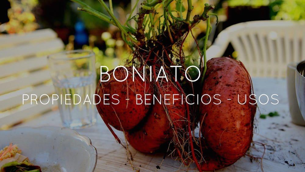 propiedades y contraindicaciones del boniato